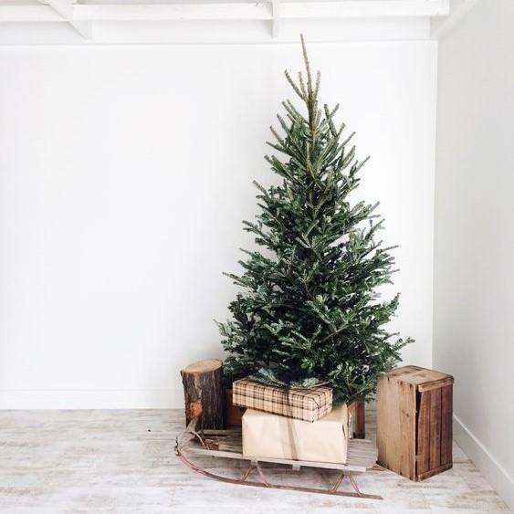 Διακόσμηση χριστουγεννιάτικου δέντρου